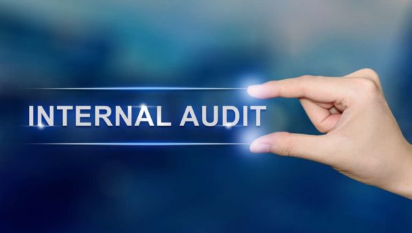 Internal Audit and Financial Advisory Firm, Delhi NCR