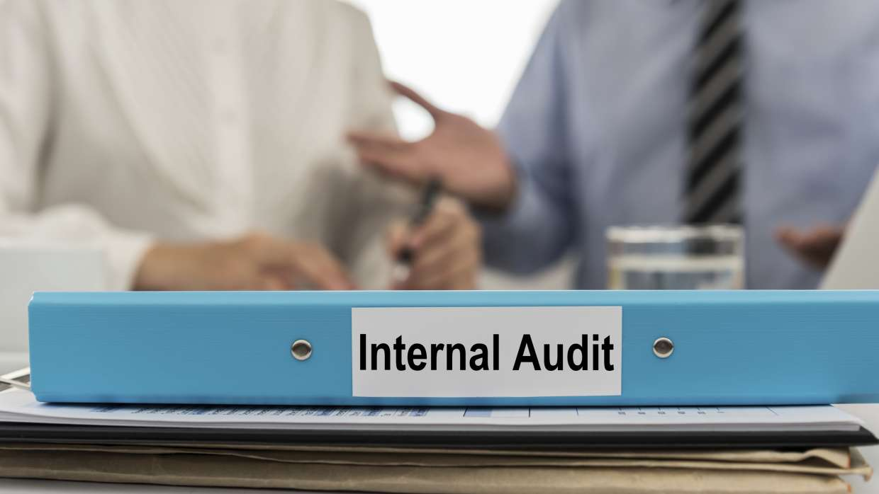 Internal Audit and Enterprise Risk Services, Delhi NCR